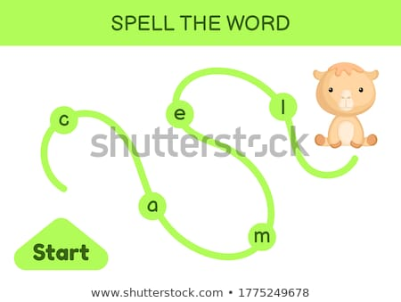 Engels woord kameel illustratie school Stockfoto © bluering