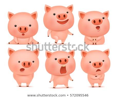 Sad Little Pig Stock photo © cthoman
