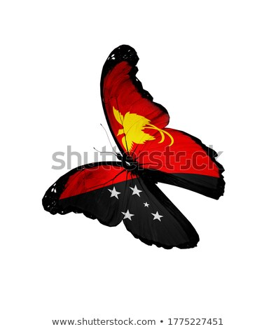 Papua New Guinea flag isolated on white Stock photo © daboost