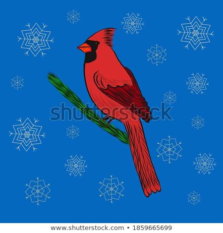 Heiter Weihnachten blau glitter Vogel Grußkarte Stock foto © cienpies
