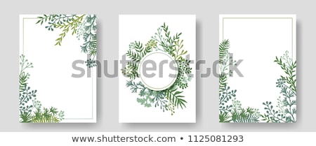 leaves round wreath frame vector watercolor wild green card decorations stock photo © frimufilms