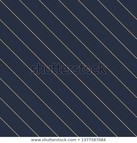 Wektora geometryczny bezszwowy przekątna liniowy wzór Zdjęcia stock © ExpressVectors