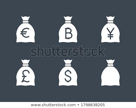 Dinero bolsa libra vector icono aislado Foto stock © smoki
