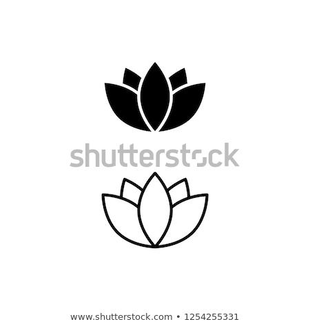 蓮 · ロゴ · 定型化された · アイコン · バラ - ストックフォト © angelp
