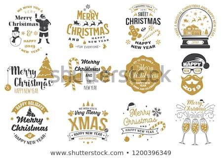 Szett karácsony kártyák hó földgömb ünnep Stock fotó © ussr