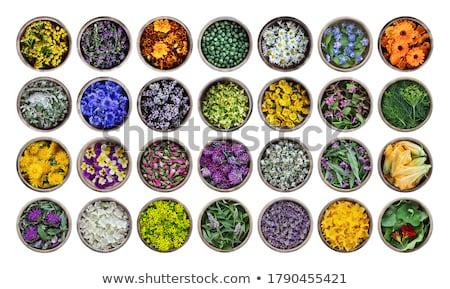 Cukkini ehető virágok fehér fából készült sekély Stock fotó © AGfoto