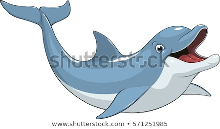 Cartoon Dolphin Stock photo © cidepix