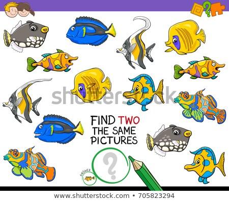 find two same fish characters game for kids Stock photo © izakowski