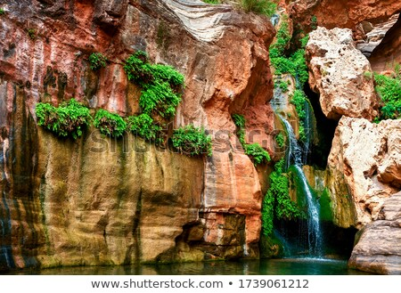 Bella deserto canyon esecuzione fiume view Foto d'archivio © pixelsnap