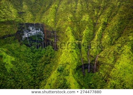 Aerial view of waterfall in mountains of Kauai Stock photo © backyardproductions