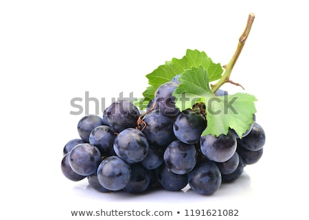 Blue grape cluster with leaves Stock photo © inxti