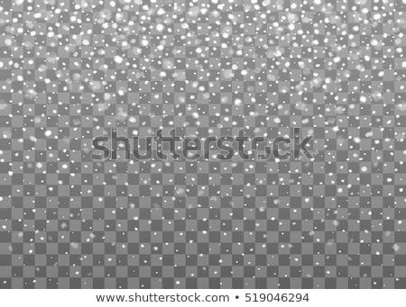 vallen · sneeuw · patroon · witte · vector · winter - stockfoto © orson
