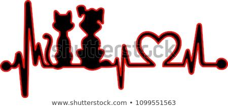 veterinary healing cat Stock photo © smithore