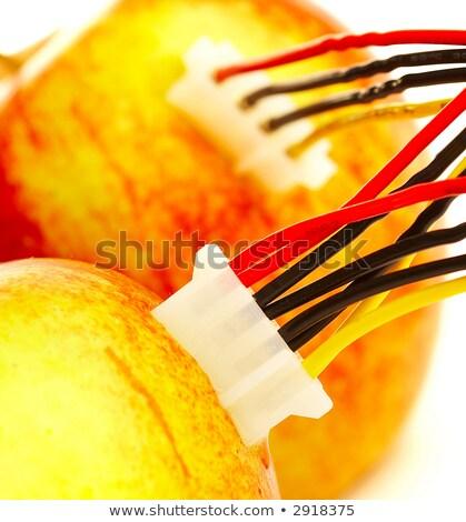 2 · 新鮮な · リンゴ · 線 · コンピュータ · 春 - ストックフォト © cookelma