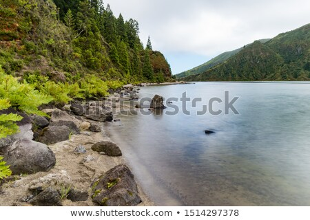 waterside scenery at the Azores Stock photo © prill