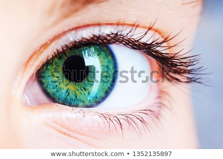 Groene ogen portret mooie blond vergadering gras Stockfoto © marylooo