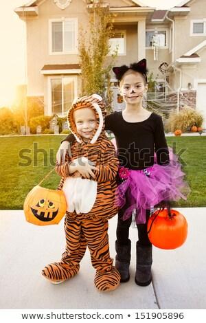 Környék gyerekek trükk csemege gyerekek halloween Stock fotó © lisafx