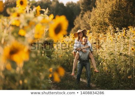 çift ayçiçeği çiçek güneş yeşil mavi Stok fotoğraf © jakatics