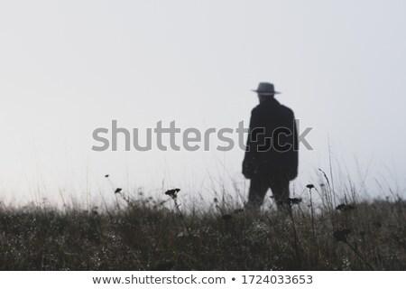 Adam fötr şapka çekici yakışıklı adam şapka seksi Stok fotoğraf © piedmontphoto