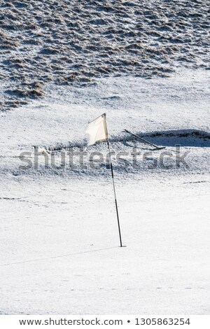 green rake in a snow covered bunker Stock photo © morrbyte