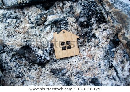 Real Estate Crisis Stock photo © Lightsource