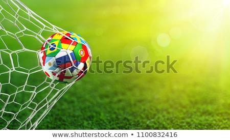 Globalny piłka nożna pierścień międzynarodowych flagi Zdjęcia stock © Lightsource