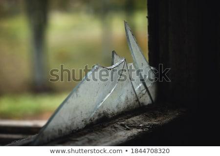 törött · téglák · képek · designer · egység · állag - stock fotó © vavlt