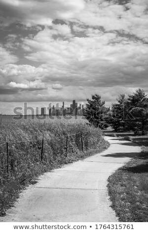Curved path towards buildings Stock photo © zzve