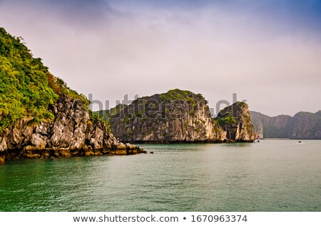 Limestone rocks sticking out of the water Stock photo © Discovod