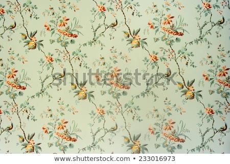 Klassiek behang decoratief papier Stockfoto © mannaggia