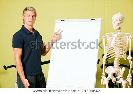 anatómia · tornaterem · fitnessz · edző · magyaráz · alapvető - stock fotó © kzenon