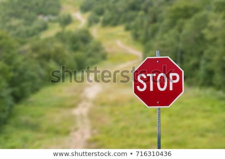 Forest Stop Sign stock photo © kimmit