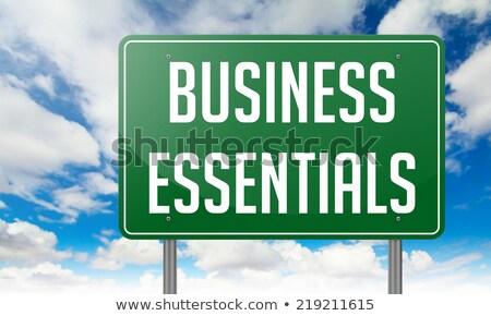 Business Essentials on Highway Signpost. Stock photo © tashatuvango