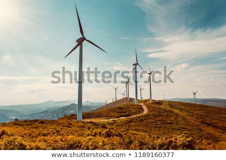 vent · générateur · coucher · du · soleil · vert · énergies · renouvelables · nature - photo stock © manfredxy