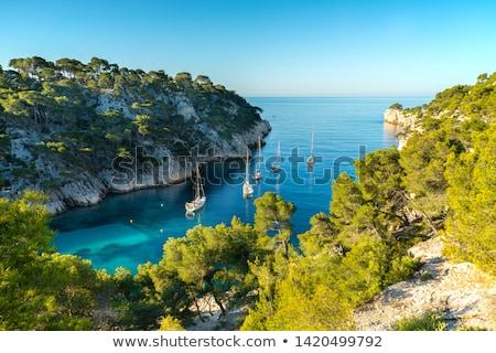 Kikötő tő víz fa tájkép szépség Stock fotó © vwalakte