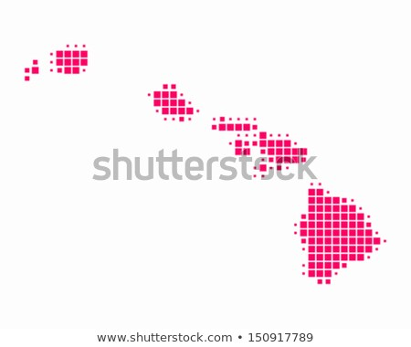 Map of USA Hawaii State with Dot Pattern Stock photo © Istanbul2009