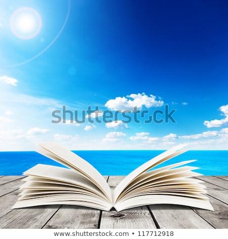 Nyitott könyv óceán hullám tengerpart tükröződés szoba kombináció Stock fotó © ajlber