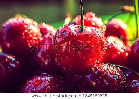 ripe, juicy cherries Stock photo © shutswis