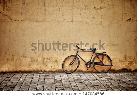 Old bicycle on the street Stock photo © stevanovicigor