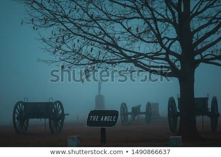 シルエット 大砲 兵士 戦い 日没 郡 ストックフォト © Zhukow