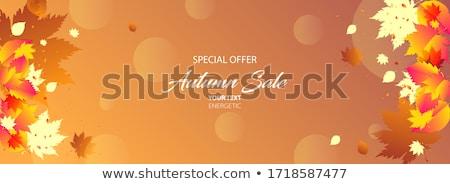 Sonbahar minimalist satış etiket yaprakları yer Stok fotoğraf © orson