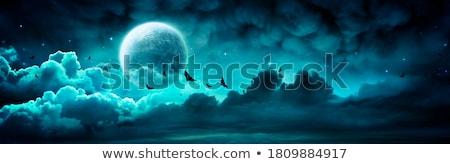 Halloween hold öreg téglafal sziluett temető Stock fotó © kjolak