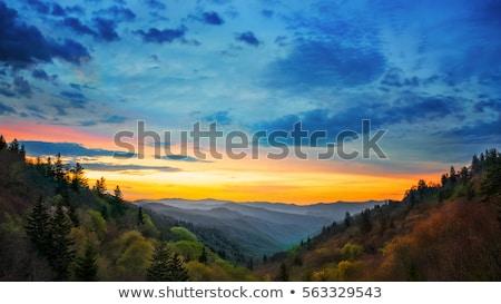 Sonbahar dağ vadi mesafe ağaç Stok fotoğraf © ondrej83