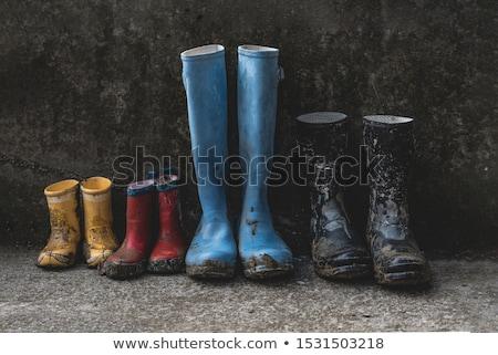 Sáros csizma pár koszos barna sétál Stock fotó © Digifoodstock