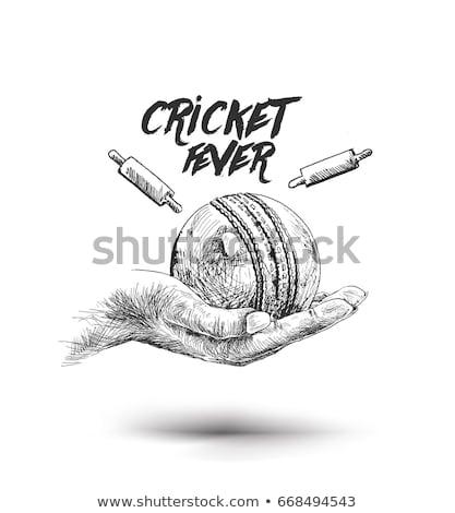 cricket · schets · icon · vector · geïsoleerd - stockfoto © rastudio