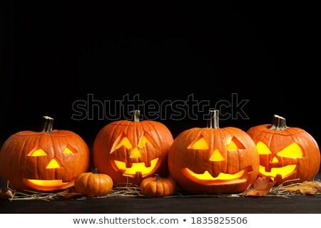 perfect · halloween · item · wat · naar · uitwisseling - stockfoto © blamb