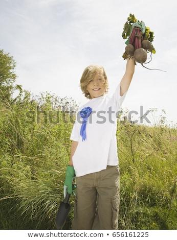 Jongen winnend produceren groeiend concurrentie wind Stockfoto © IS2