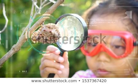 felfedez · természet · kicsi · ázsiai · lány · kamera - stock fotó © wavebreak_media