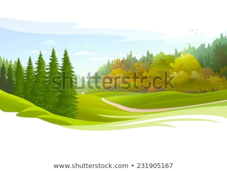 Landscape with coniferous forest on the horizon and flowering meadow. Vector cartoon close-up illust Stock photo © Lady-Luck