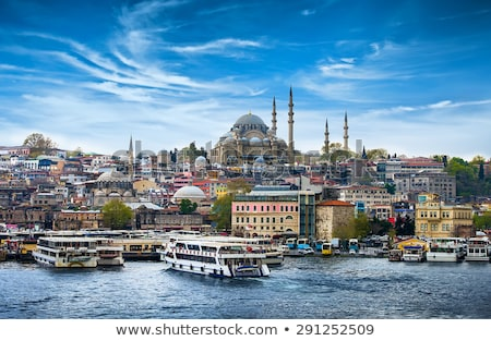 View on istanbul city Stock photo © Givaga